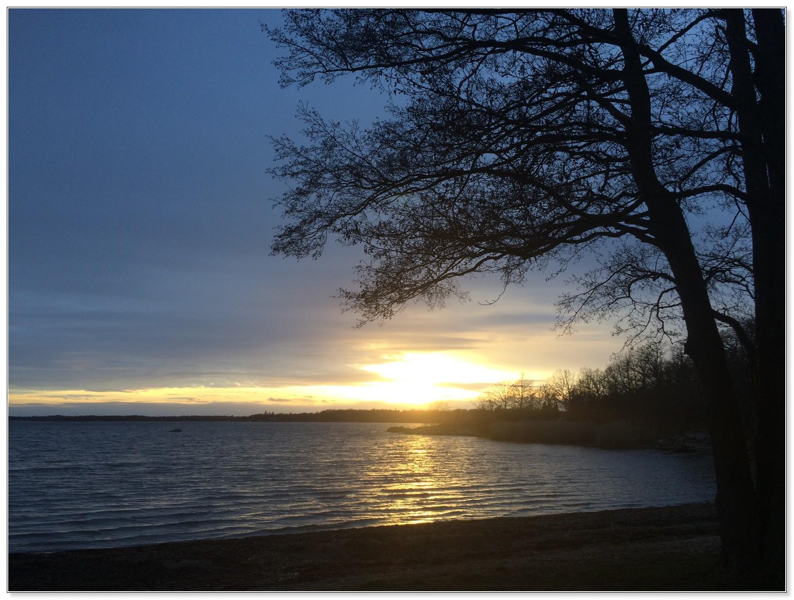 Bidrag 9 – Solnedgång över Studentviken
