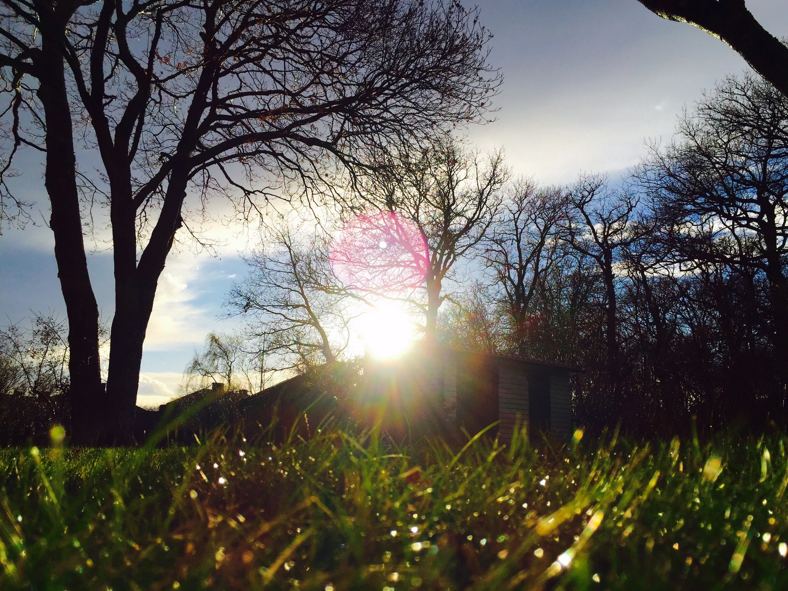 Bidrag 13 – Morgon i september, i en trädgård på Kronobergsgatan
