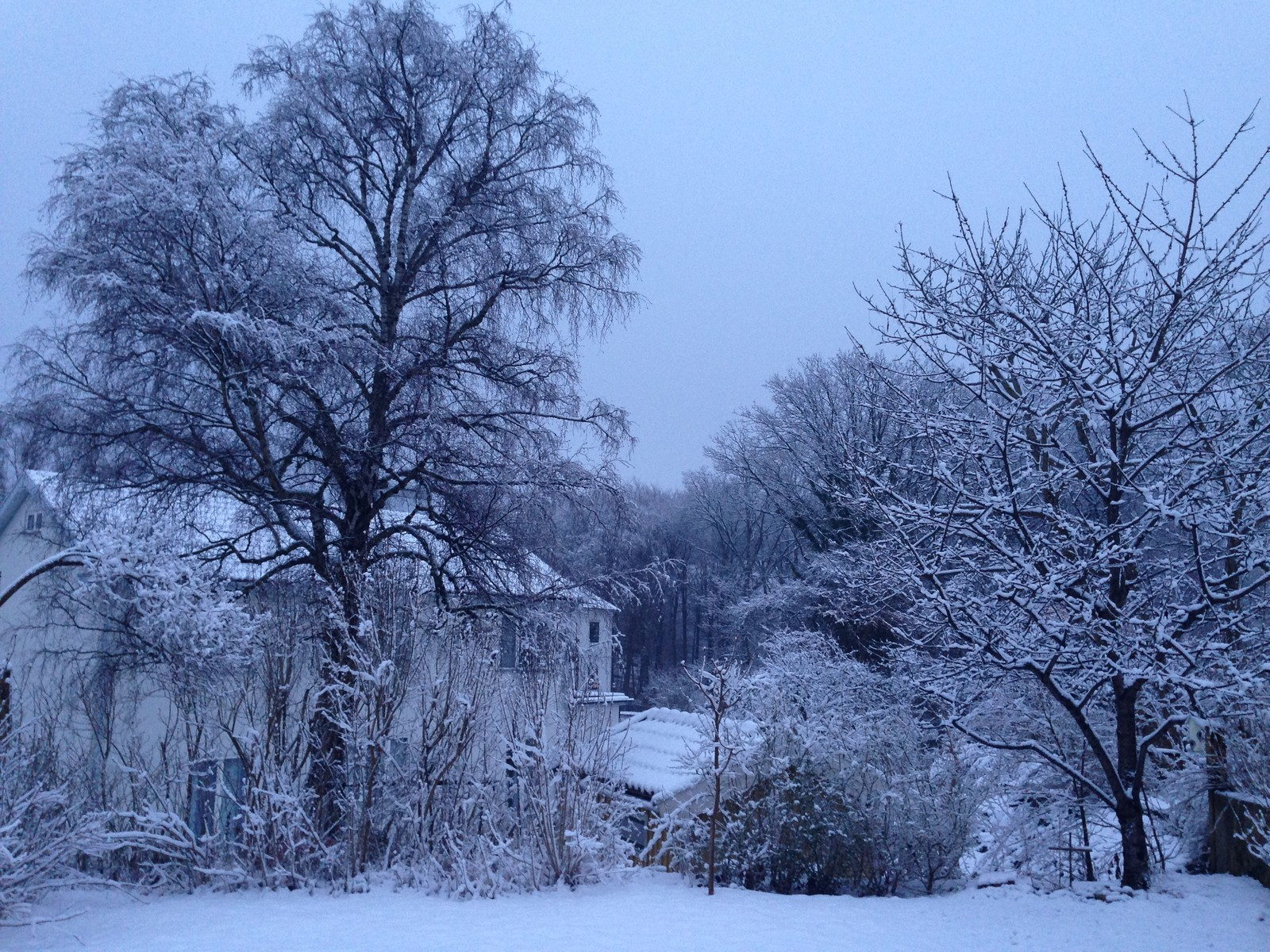 Bidrag 3 - Vintervy från Kronobergsgatan en tidig morgon