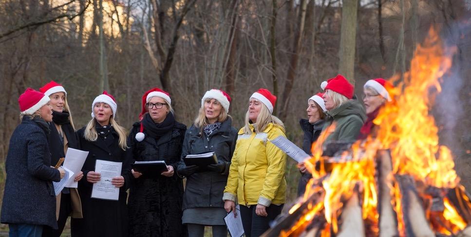 Julmys på Studentviken